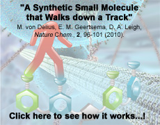 A Synthetic Small Molecule that Walks down a Track